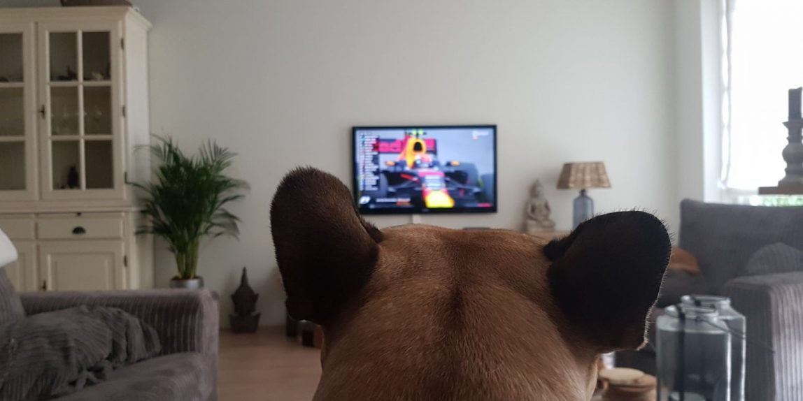Max fan van Verstappen Formule 1