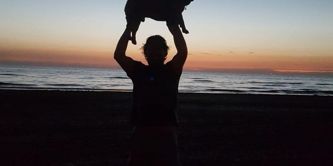 max franse bulldog zonsondergang strand